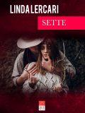Una donna sola, dolce, intelligente, caparbia, romantica, e sette uomini. Chi vincerà? Per gli amanti del romance